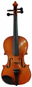 Violin Cropped